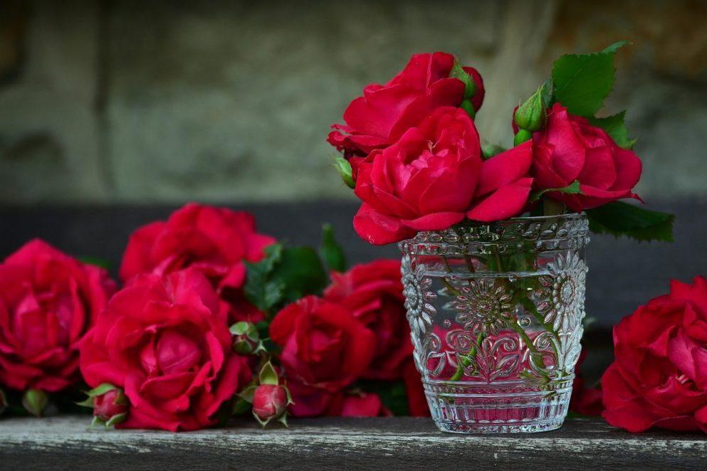Für dich solls rote Rosen regnen